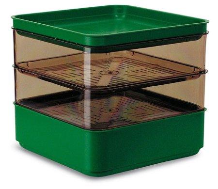 Germogliatore di colore verde a 2 piani